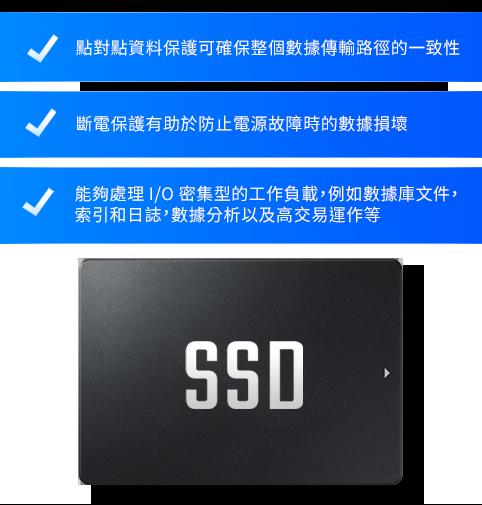 企業級 SSD 儲存伺服器