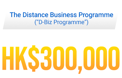 The Distance Business Programme