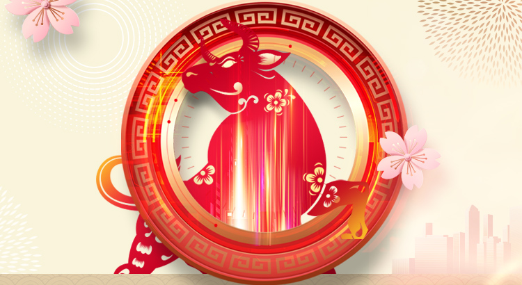 PowerEdge Dedicated Server Lunar New Year Sale